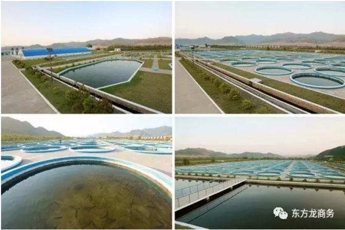 高端水产养殖全国布点投资选址项目