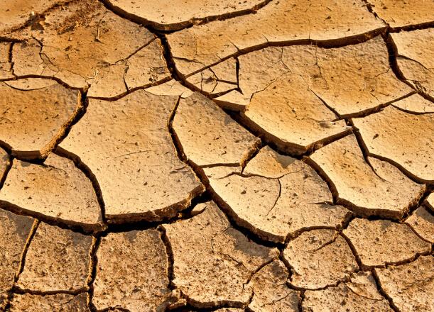 企业投资选址丨土壤改良 降低化肥使用量
