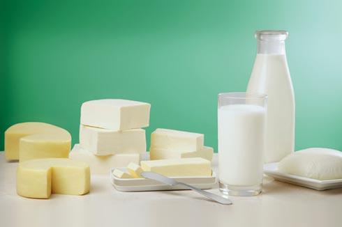 澳洲进口奶牛 乳制品 生产加工投资选址项目
