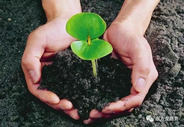 农用有机肥料投资选址项目