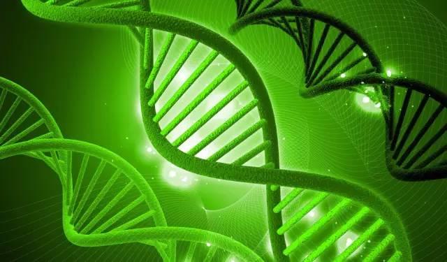 细胞生物科技投资选址项目