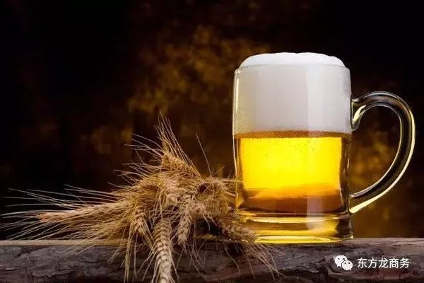 啤酒产业特色小镇投资选址项目