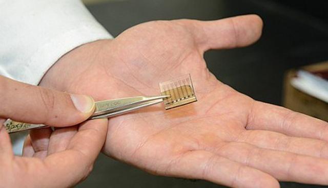 纳米碳材料电池投资选址项目