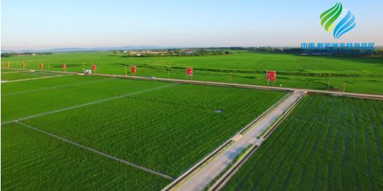 全力助推吉林(中国-新加坡)食品区委托招商引资,加快打造世界级安全食品生产示范区!