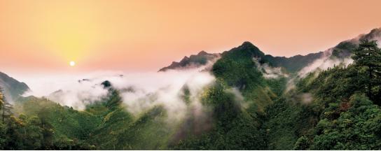 集团全力助推江西抚州资溪县委托招商引资,加速创建生态旅游强县