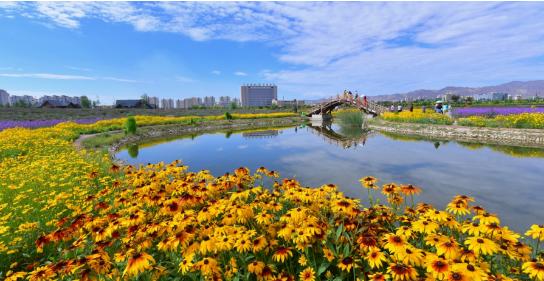 集团助力甘肃省金昌经济技术开发区委托招商引资,推动主导产业转型发展