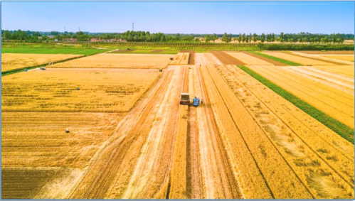 集团全力助推河北沧州盐山县委托招商引资,强化特色产业,协同打造中国管道装备制造基地!