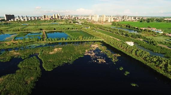 集团全力助推黑龙江大庆肇源县委托招商引资,挖掘多元化产业融合发展新动能