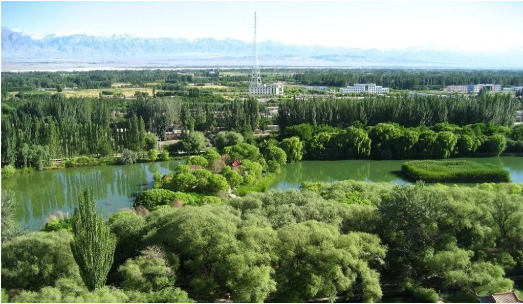 东方龙商务集团助力新疆乌什县委托招商引资,推进产业发展集聚