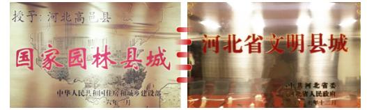 """东方龙商务集团助力河北高邑县委托招商引资,以""""新经济""""撬动""""新引擎"""""""