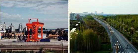 集团全力助推黑龙江省依安县委托招商引资,发挥产业支撑带动作用